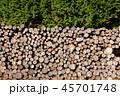 間伐材 丸太 木材の写真 45701748