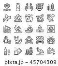 北海道 アイコン セットのイラスト 45704309