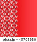 スノーフレーク 雪片 雪花のイラスト 45708930