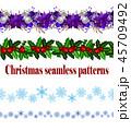 クリスマス ポインセチア 猩々木のイラスト 45709492