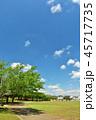 青空 夏 公園の写真 45717735