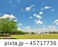 青空 夏 公園の写真 45717736