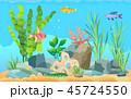 魚 魚類 大洋のイラスト 45724550