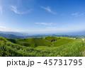 大室山 夏 火山の写真 45731795