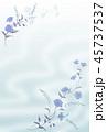 青い花の背景素材 45737537
