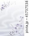 青い花の背景素材 45737538