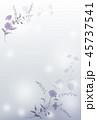 青い花の背景素材 45737541