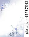 青い花の背景素材 45737542