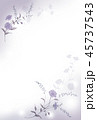 青い花の背景素材 45737543