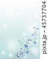青い花の背景素材 45737704