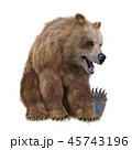 熊 グリズリー 動物のイラスト 45743196