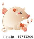 猪と梅 45743209