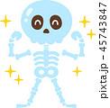 骨 強い ガッツポーズのイラスト 45743847