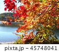 宇都宮市森林公園 45748041