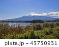 秋 大石公園 風景の写真 45750931
