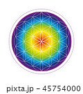 45754000