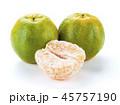 オレンジ 柑橘 柑橘系の写真 45757190