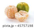オレンジ 柑橘 柑橘系の写真 45757198