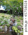 日本庭園 庭園 池泉回遊式庭園の写真 45758028