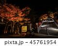 紅葉 ライトアップ 大山阿夫利神社の写真 45761954