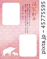 亥年 年賀状 フレームのイラスト 45775595