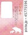 亥年 年賀状 フレームのイラスト 45775596
