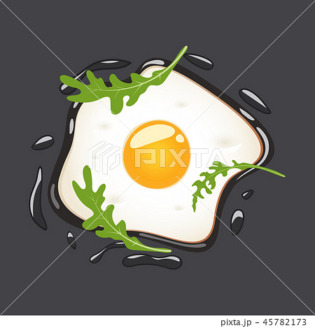 Fried eggs with arugula, isolated on grey background. Vector illustration. 45782173