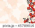 椿 橙 45789016