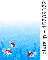 金魚 魚 和のイラスト 45789372
