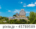 姫路城 城 世界遺産の写真 45789589