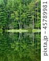 御射鹿池 新緑 池の写真 45789981