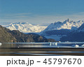 Grey Glacier and Grey Lake at Torres del Paine National Park 45797670