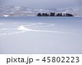 北海道、雪の平原 45802223