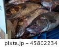 タラ(鱈)の水揚げ、魚市場 45802234