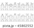 かわいいウサギのボーダーのセット 正面と背面 線画 45802552