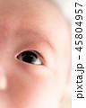 眼 目 赤ちゃんの写真 45804957