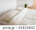 ベッドルーム 45810842
