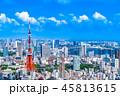 東京 東京タワー 晴れの写真 45813615