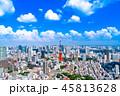 東京 東京タワー 晴れの写真 45813628