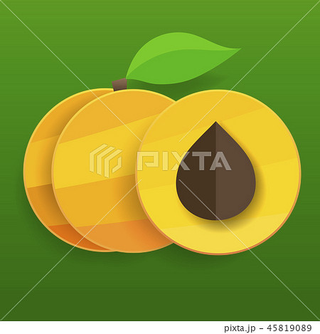 Flat apricots in section and whole with leaves. 45819089