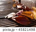 枯れ葉照らす 45821498