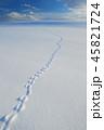 北海道の雪景色  新雪 45821724
