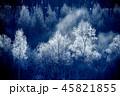 樹氷 45821855