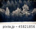 樹氷 45821856