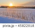 厳冬の朝 45822018