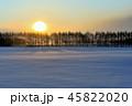 厳冬の朝 45822020