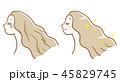 ヘアケア 髪 女性のイラスト 45829745