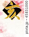 亥 亥年 年賀状のイラスト 45831000