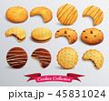 ジンジャーブレッド クラッカー クッキーのイラスト 45831024