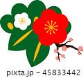 梅 梅の花 年賀状素材のイラスト 45833442